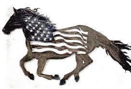 americn horses